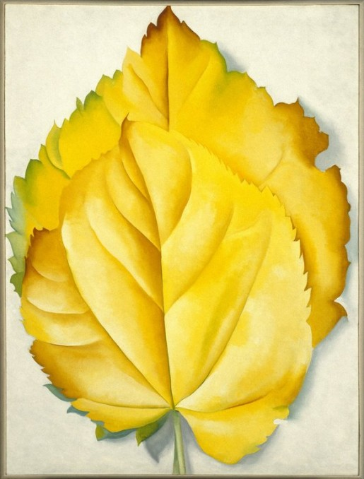 Georgia O'Keeffe, 2 Yellow Leaves, 1928, Bequest of Georgia O'Keeffe