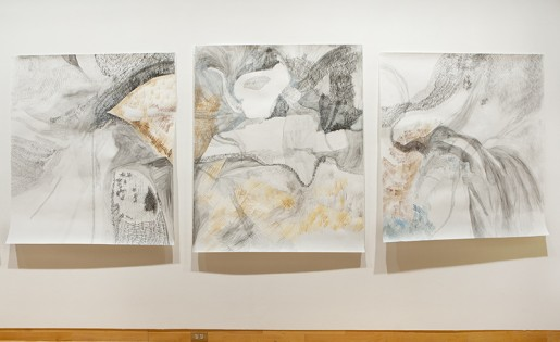 Megan Hildebrandt | USF MFA 2012 Counting Radiation Series, graphite and ink on paper, 30 x 50 in ea, 2012.
