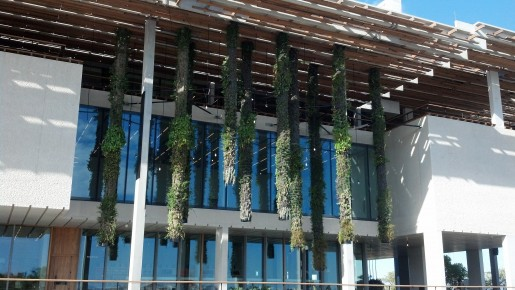 Photo: Perez Art Museum Miami Outside view